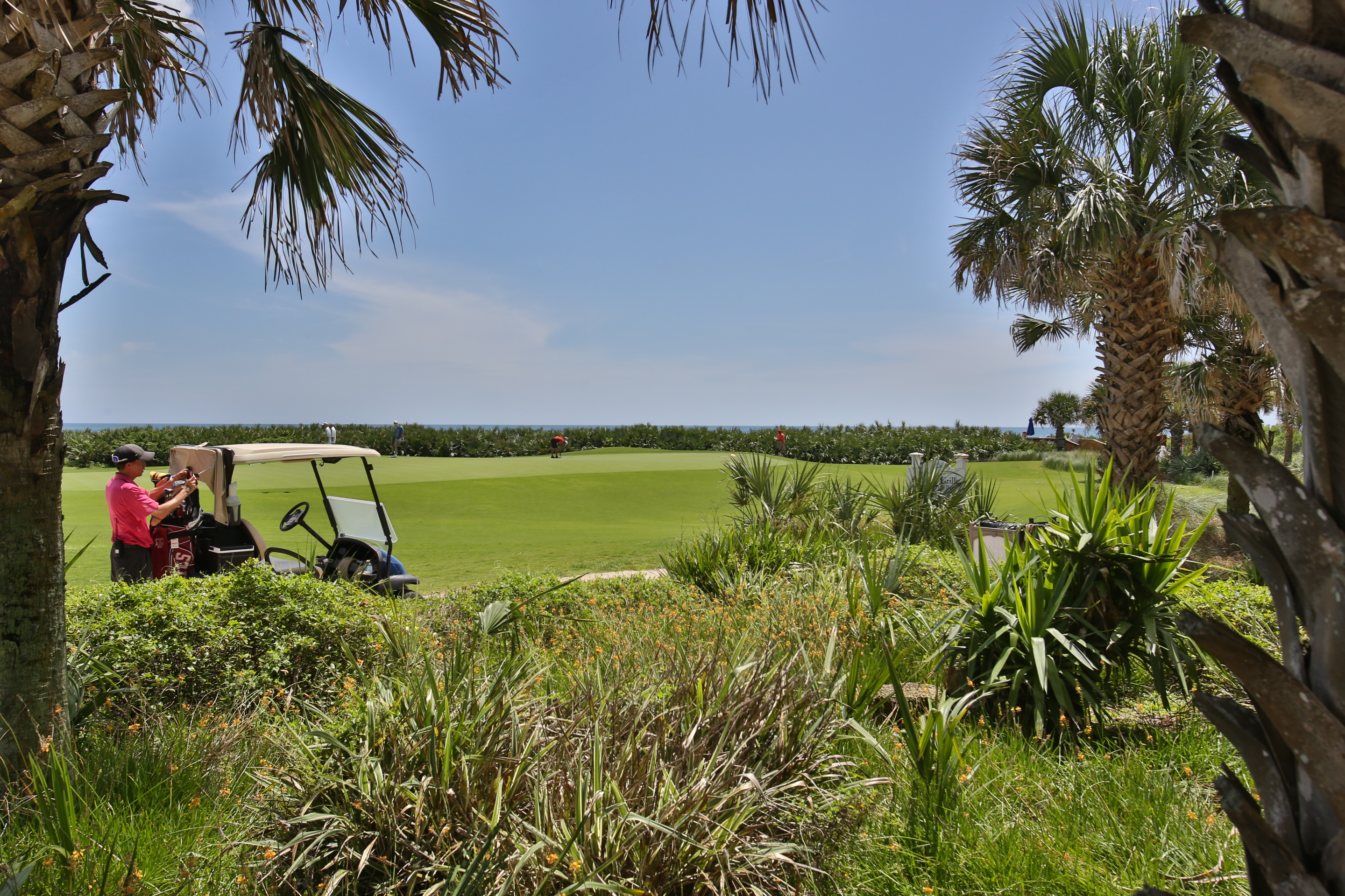 hammock beach golfer cart 18th green new 3