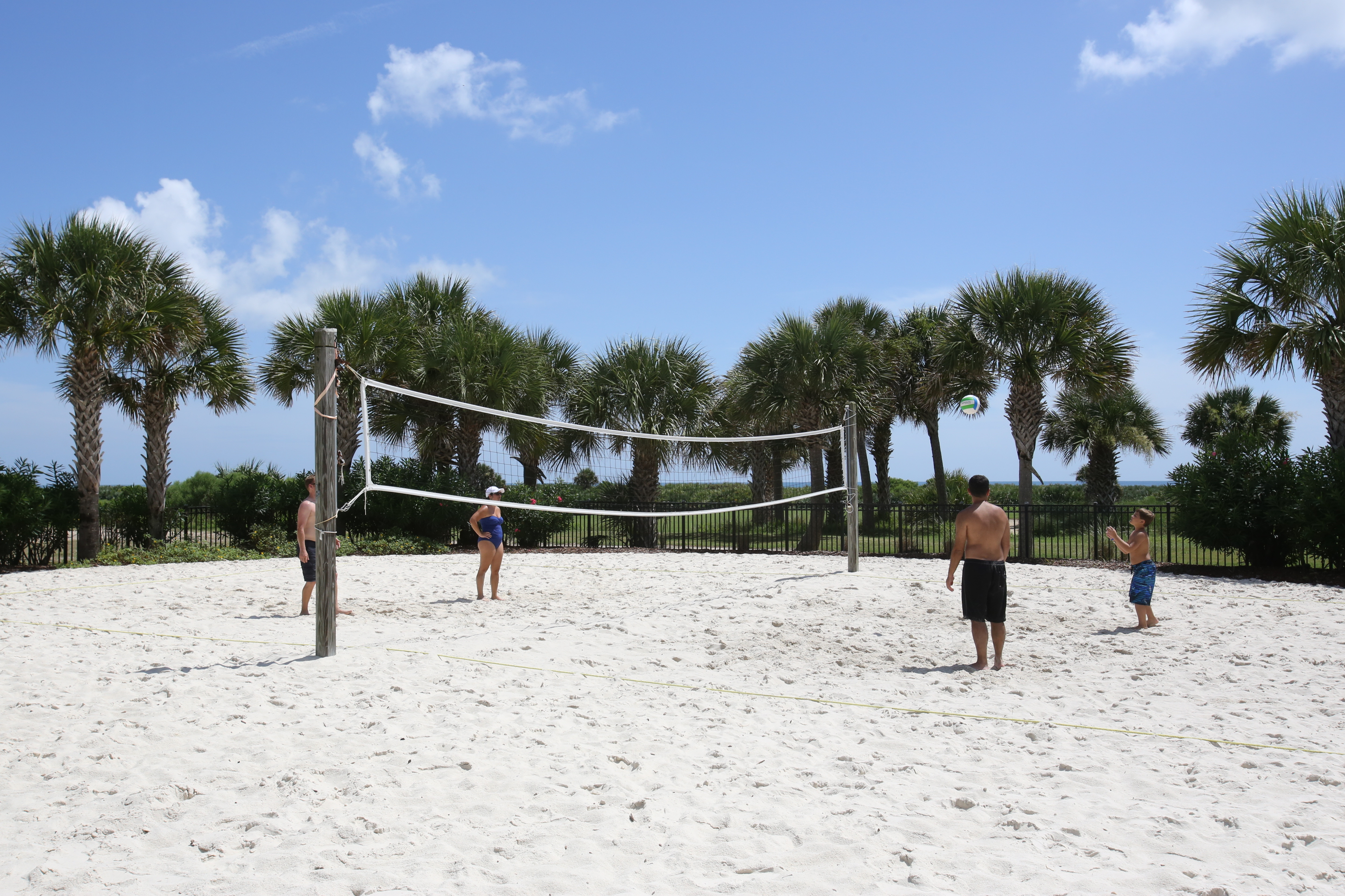 hammock beach volleyball sand new